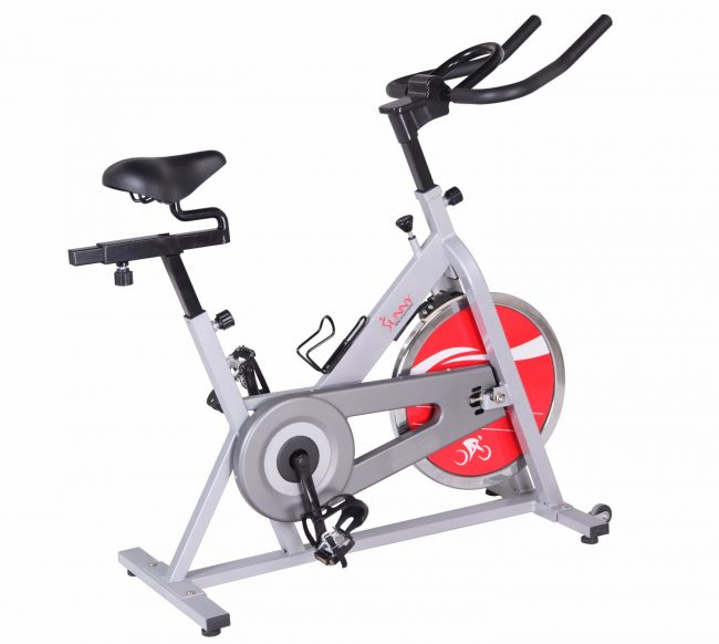 Best Spin Bike - Sunny SF-B1001 Indoor Cycling Bike