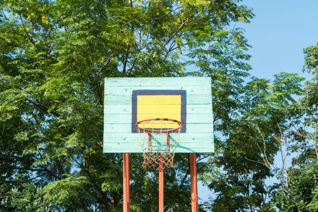 Best Basketball Hoop Review - tree