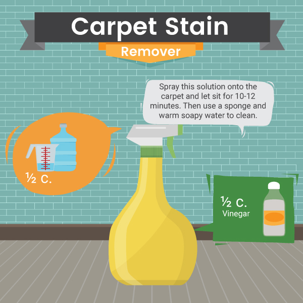 Carpet Stain Remover - Home - Green and Natural Cleaning