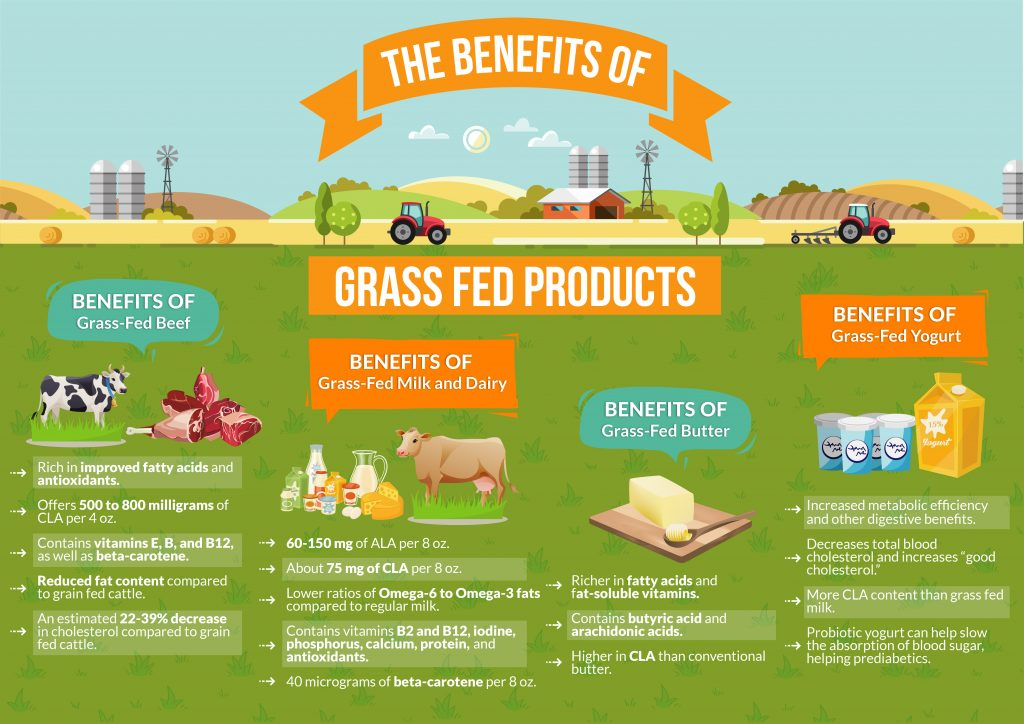 The Benefits of Grass Fed Products