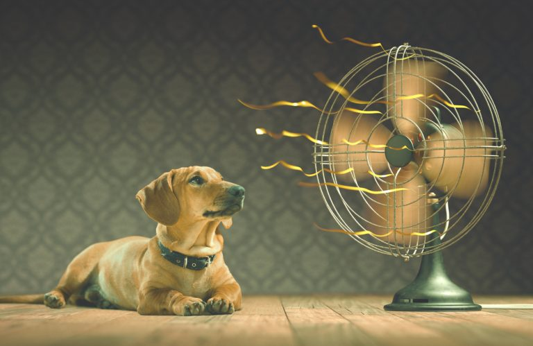 Use electric Fans to Lower the Cost of Cooling