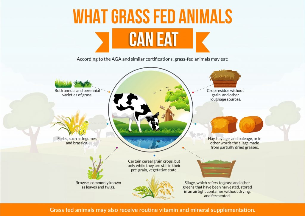 What Grass Fed Animals Can Eat