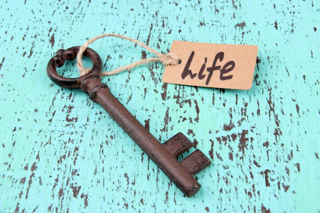 work life balance - the key to life