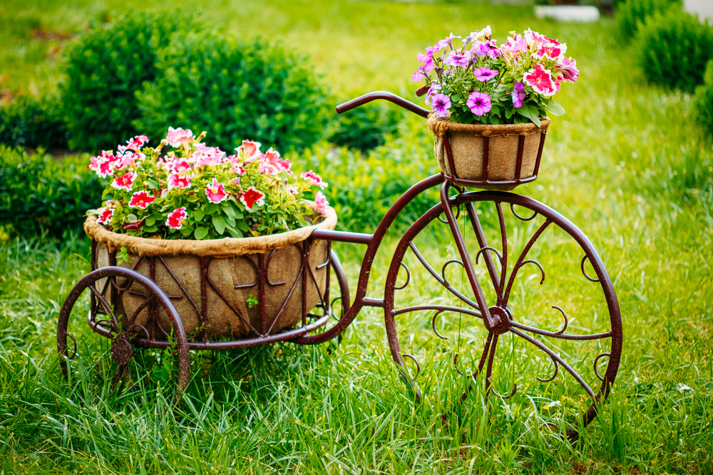 landscaping - old bike with flowers