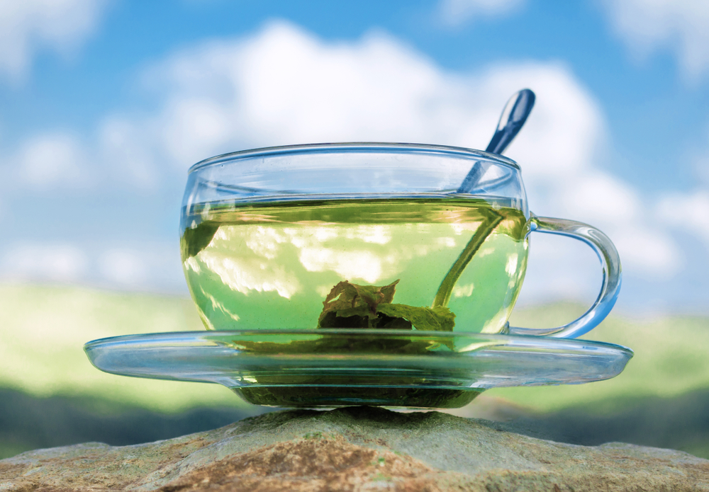 green tea in cup - beautiful image