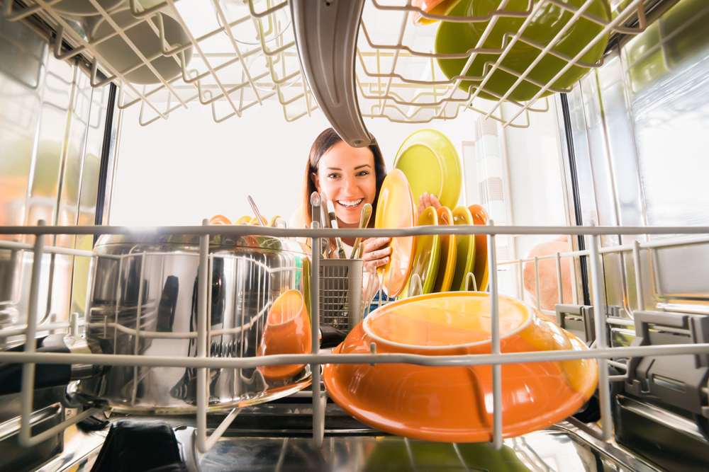 view from within a dishwasher